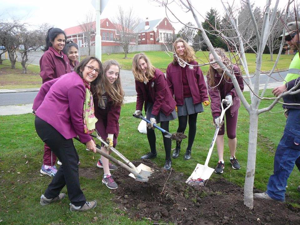 Ogilvie High students planting a tree