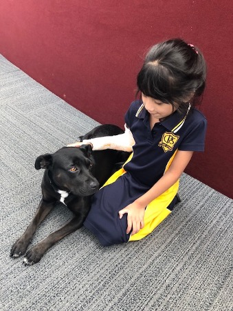 Student sitting on the floor with a black dog